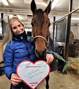 Villa Vikhem kärleksbombar hästen Clintan Sisu
